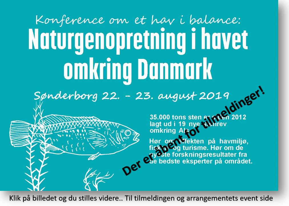 Stenrev Konference Sønderborg - Klik her.